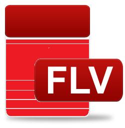 flv repair